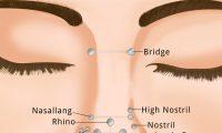 Nose Piercing Types